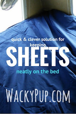 Quick and clever way to keep sheets on a bed! Wacky Pup