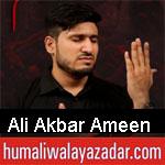 https://www.humaliwalyazadar.com/2018/08/ali-akbar-ameen-nohay-2019.html