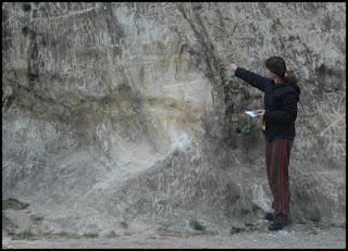 A cientista da natureza, Lucélia Letta, expõe uma amostra do quartzo-sericita xistos com nítida foliação subvertical, no Pico do Jaraguá, localizado na periferia noroeste da  cidade  de São Paulo. (clique para ampliar) Foto: acervo Letta/Velázquez