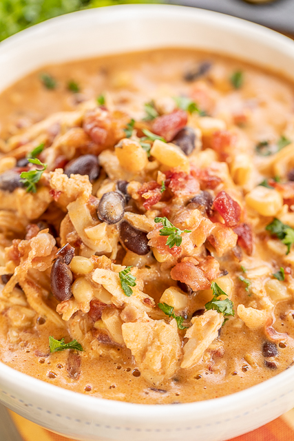 diced chicken slow cooker recipes