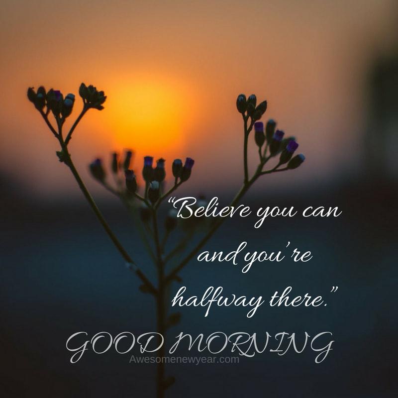 download beautiful good morning images  greetings