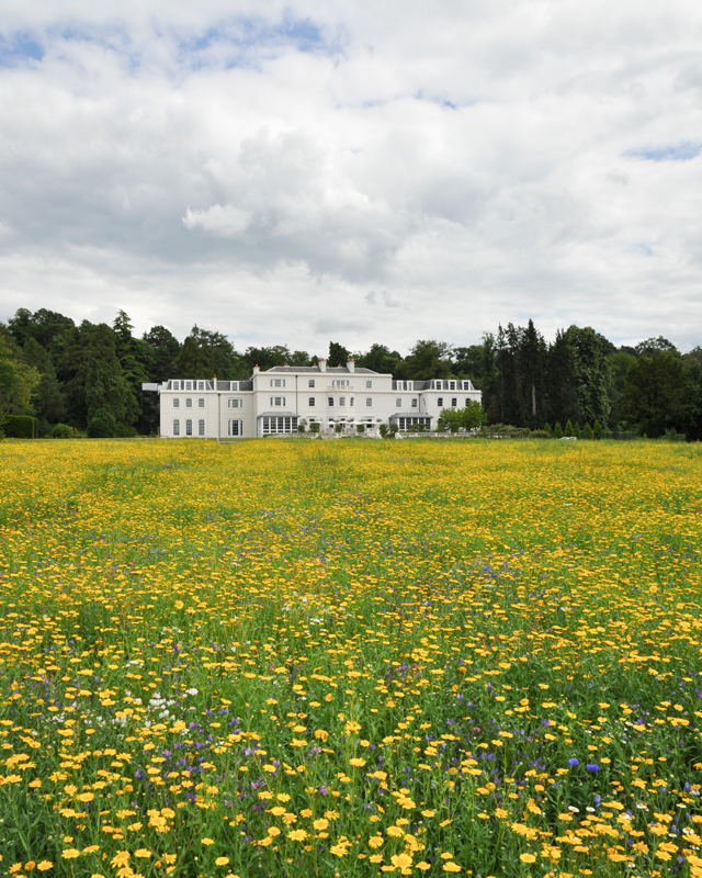 London Escape: Coworth Park