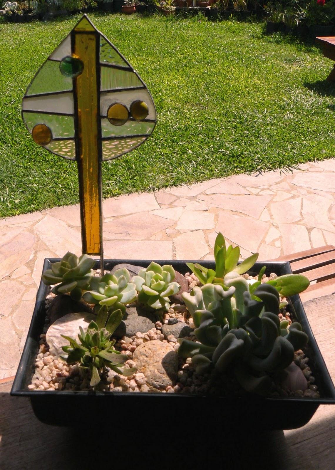 tiffany cactus y suculentas jardines decorativos