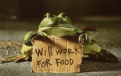 FROG WORK for FOOD