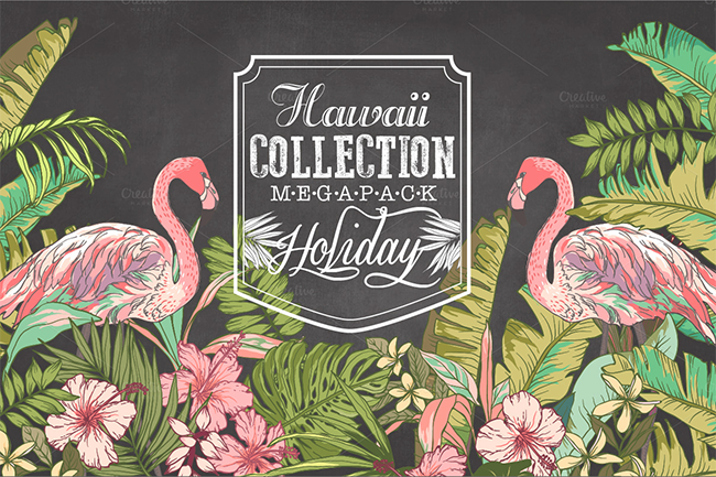 20% Hawaii collection Mega Pack par Graphic Box