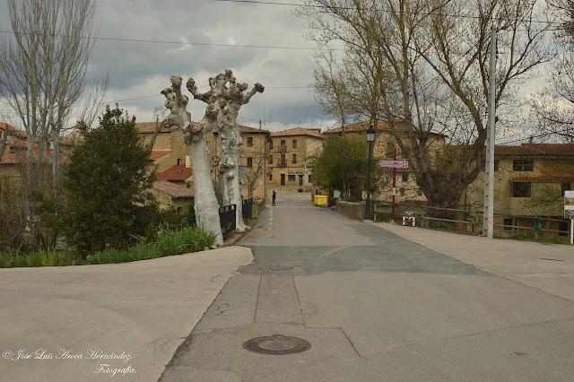 Sajazarra (La Rioja).