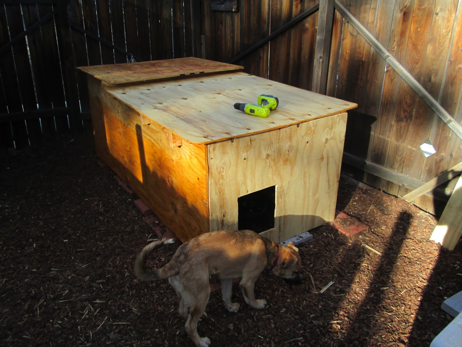 Ancient Pathways Survival School, LLC: DIY Dog House Plans
