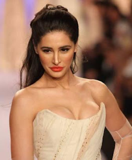 Nargis Fakhri collapsed during the shooting