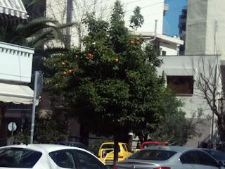 Οδός Πασαλίδη Καλαμαριά