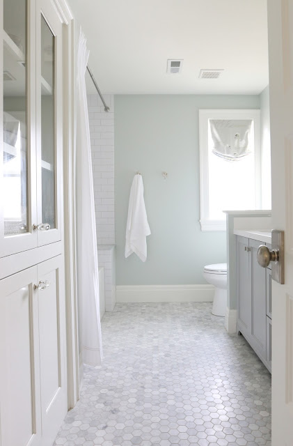 Sea Salt by Sherwin-Williams