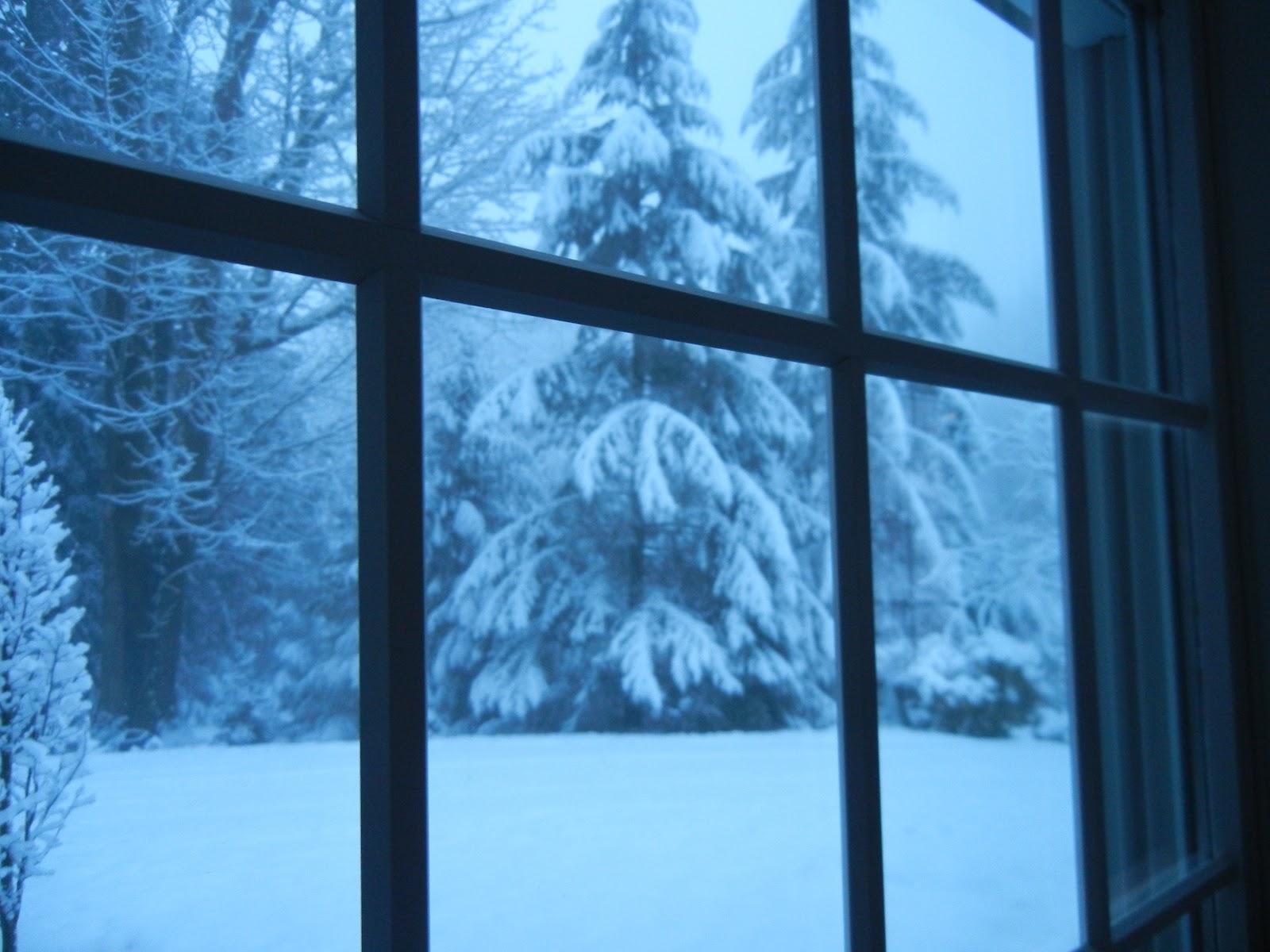 Animated Snow Falling Window | www.imgkid.com - The Image ...