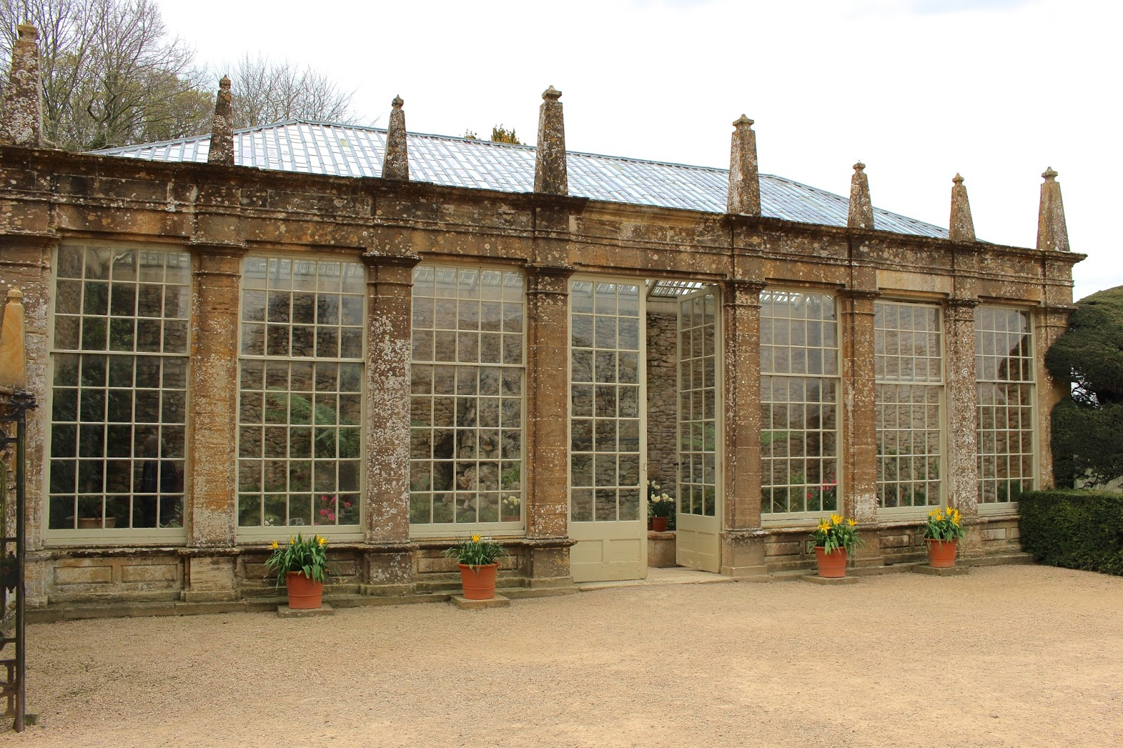 montacute house orangery photography