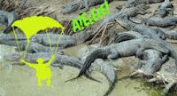 plaja cu crocodili