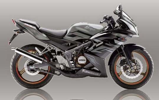 Kawasaki Ninja 150RR Grey