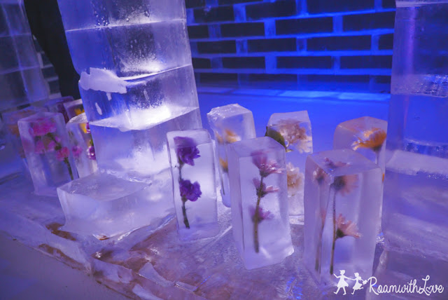review, Honeymoon, Japan, kyushu, fukuoka, รีวิว, เตรียมตัว, เที่ยว, ญี่ปุ่น, คิวชู, ใบไม้เปลี่ยนสี, สวีท, Huis ten bosch, ฮูส เทน บอช, flower, ice cafe