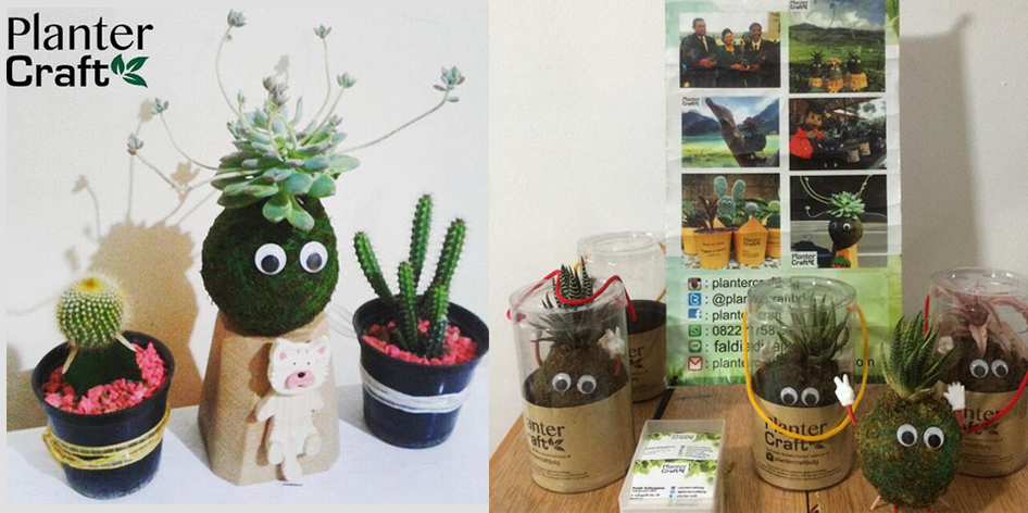 planter craft boneka lumut Bandung