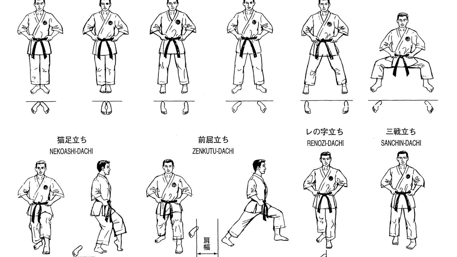 Basic Karate Stances Karate Choices
