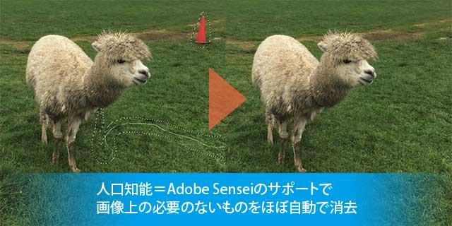 adobe senseiによる修正
