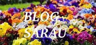 Blog Sarau