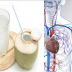 Things Will Happen To Your Body When You Drink Coconut Water For 14 Days