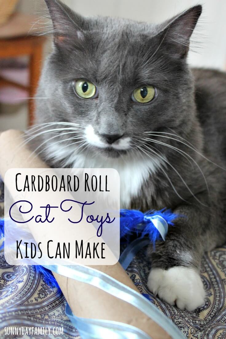 Make fun interactive cat toys from cardboard rolls! These super easy pet projects are great for kids and make awesome gifts for cat lovers too.