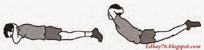 Bentuk-bentuk Latihan Kebugaran Jasmani