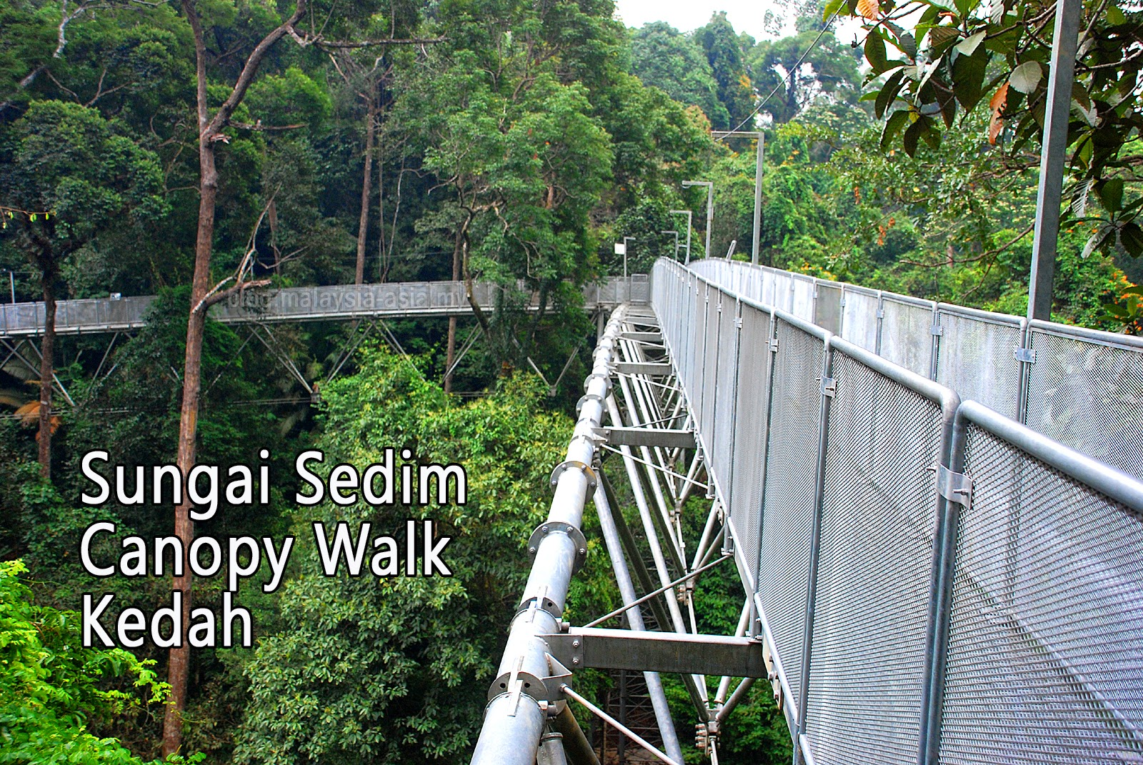 Sungai Sedim Tree Top Walk in Kedah & Canopy Walks in Malaysia - Malaysia Asia Travel Blog