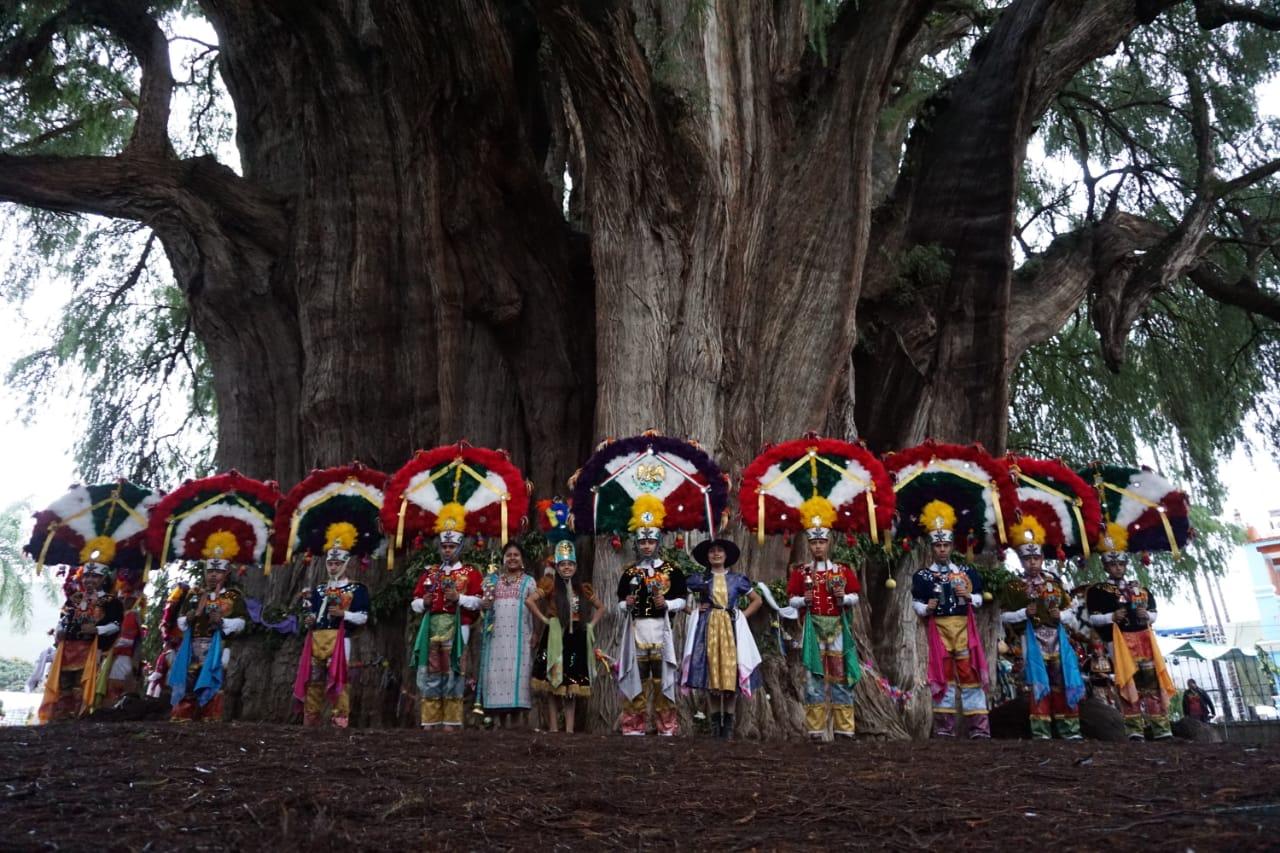 Celebran la Fiesta 2018 al Árbol del Tule en Oaxaca - Vive Oaxaca - Viajes,  Tradiciones, Experiencias Vive Oaxaca - Viajes, Tradiciones, Experiencias