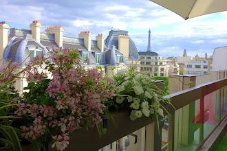 Mes Adresses : La résidence d'été du restaurant W, la terrasse penthouse de l'hôtel Warwick Champs-Elysées - 5 rue de Berri - Paris 8