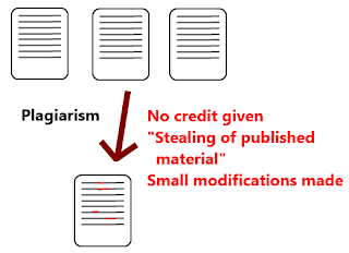 Example of Article Plagiarism Diagram