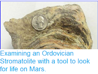 http://sciencythoughts.blogspot.co.uk/2014/01/examining-ordovician-stromatolite-with.html