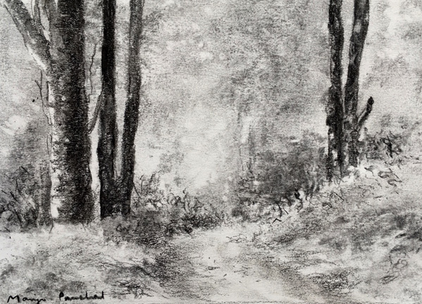 Charcoal landscape sketch:Across the fields, in a Stillman ...  |Charcoal Drawings Of Landscapes