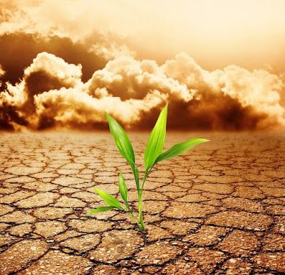 Perubahan iklim dalam ketahanan pangan - berbagaireviews.com