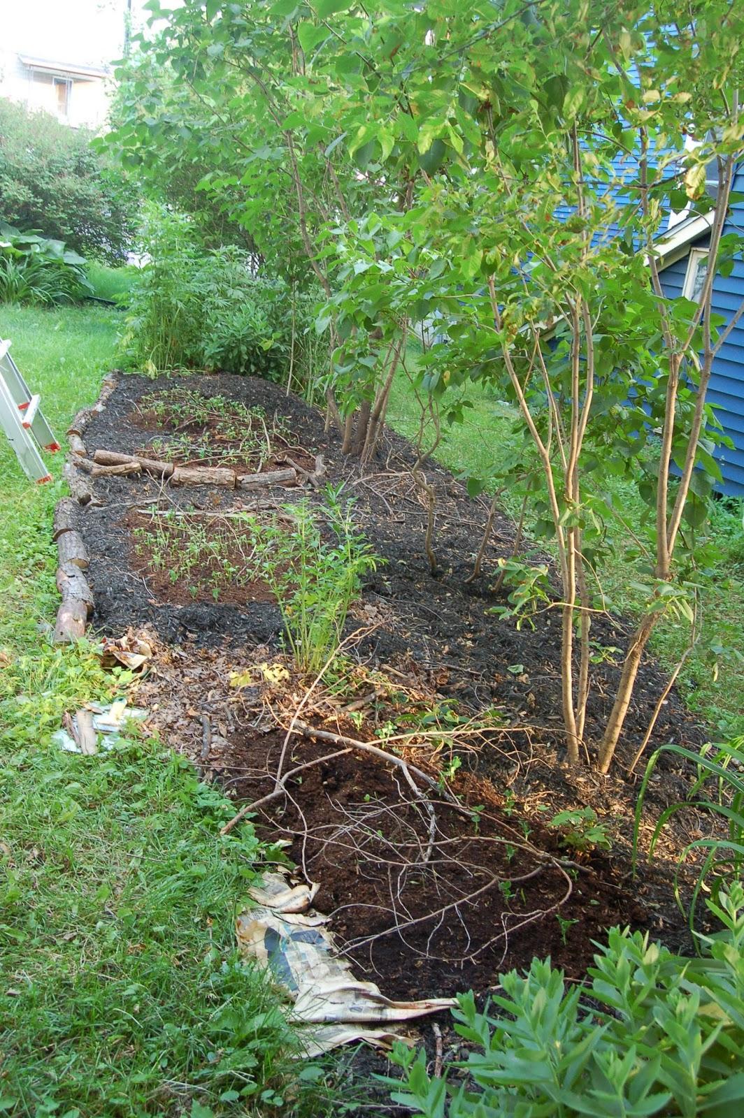 3 jardins au qu bec des plates bandes comestibles et riches en diversit partie 1. Black Bedroom Furniture Sets. Home Design Ideas