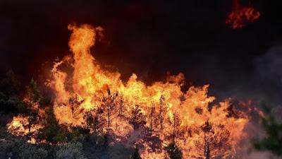 ΠΥΡΟΣΒΕΣΤΙΚΗ- Συνδρομή της Ηπείρου στην πυρκαγιά της Χαλκιδικής - : IoanninaVoice.gr