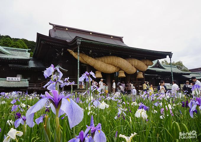 宮地嶽神社、福岡