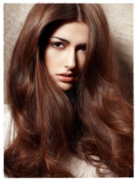 48 interesting brown hair color shades hairstyles hairstylo chestnut252bbrwon252bhair252bcolor urmus Image collections