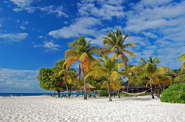 Palm Island,St Vincent and the Grenadines
