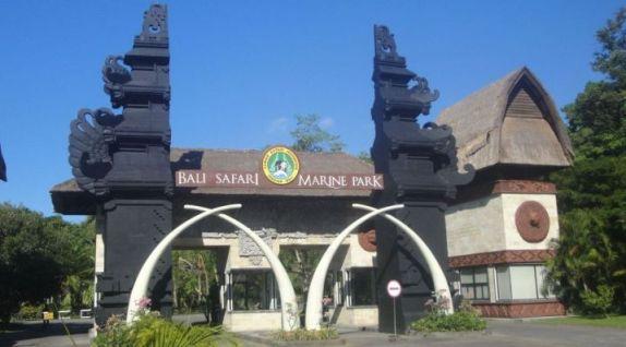 Paket dan Harga Bali Safari dan Marine Park - Bali, Kebun Binatang, Aktivitas, Liburan, Wisata, Paket, Atraksi, Bali Safari Marine Park