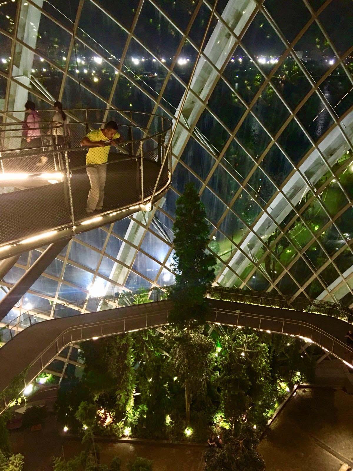 Fakta lain tentang Flower Dome, Harga Tiket dan Jam Operasional Flower Dome, Flower Dome ini merupakan sebuah tempat yang unik dan mempesona yang wajib kalian kunjungi kalau liburan ke Singapura, liburan akhir tahun ke Singapura