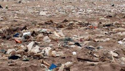 Pengertian Penyebab Dampak Pencemaran Tanah