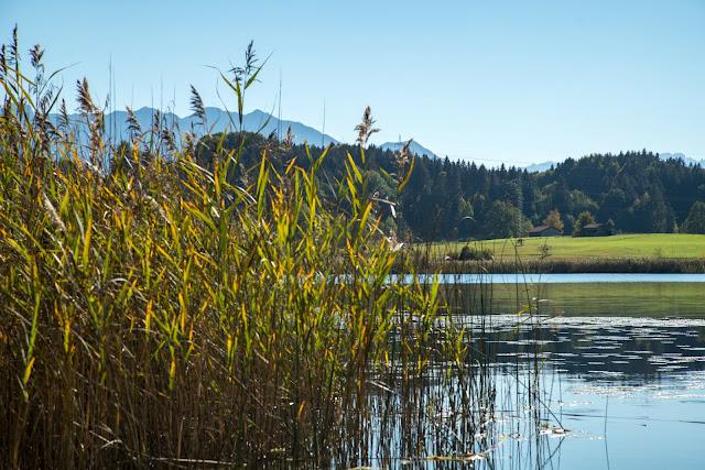 Meditationsweg Ammergauer Alpen im Blauen Land  Etappe 3 Murnau - Aidling 07