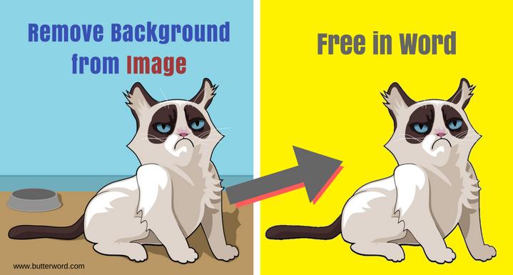 photo background,background remover,make image transparent background,
