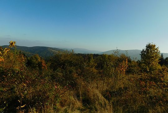 Widok z Trzebuńskiej Góry na wschód.