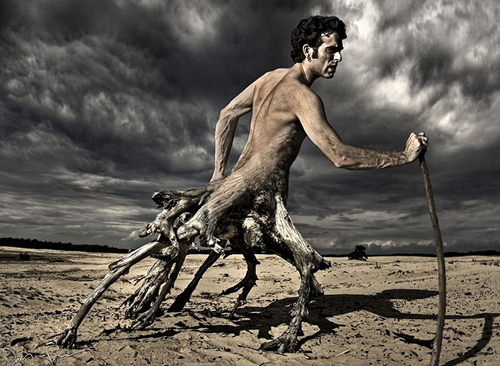 manipulasi manusia dengan akar pohon