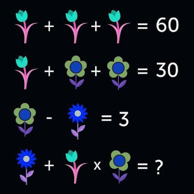 Math Equation Flower Picture Puzzle for Kids