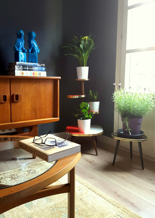 Urban Jungle Bloggers: Plantas en casa