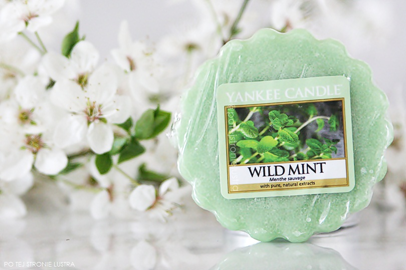 wosk yankee candle wild mint