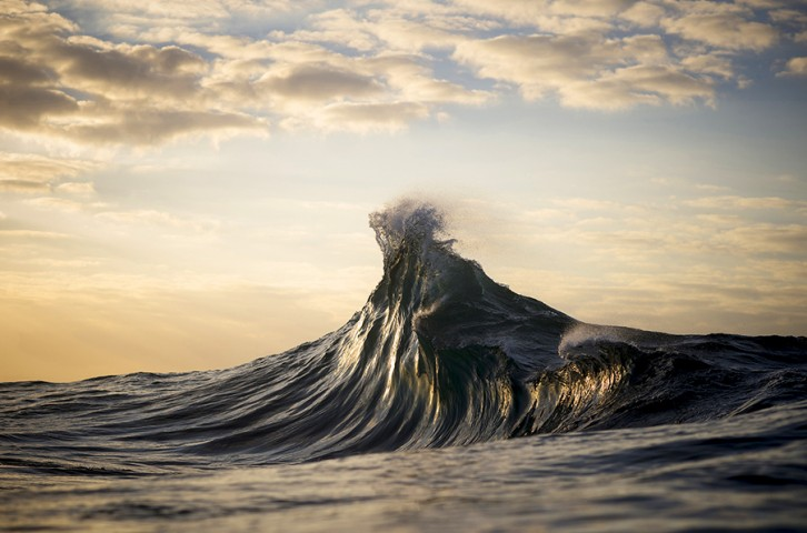 Ray Collins 19