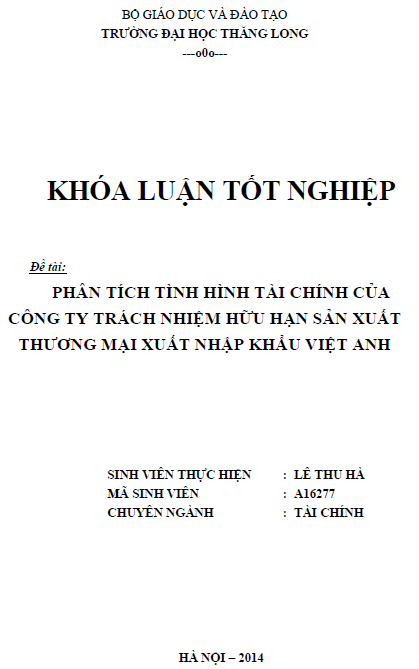 Phân tích tình hình tài chính của Công ty TNHH Sản xuất Thương mại Xuất nhập khẩu Việt Anh